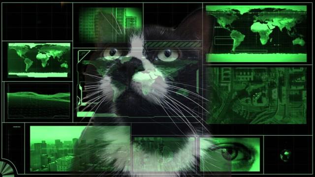 oedipuss-the-hacker